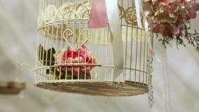 Attributen van huwelijksceremonie stock video