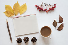 Attributes of autumn, coffee and notebook on a white board Stock Image