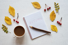 Attributes of autumn, coffee and notebook on a white board Royalty Free Stock Photo