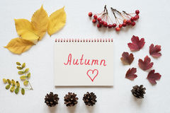 Attributes of autumn and notebook on a white board Royalty Free Stock Photos