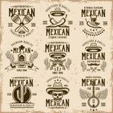 Attributi messicani del cittadino e segni autentici illustrazione vettoriale