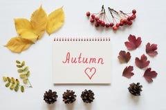 Attributs d'automne et de carnet sur un conseil blanc Photos libres de droits