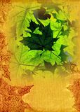 Atumnal leaves template Royalty Free Stock Images
