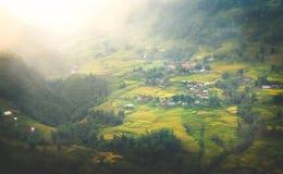 Aturdindo Dunset sobre o campo bonito do arroz em Vietname Imagens de Stock