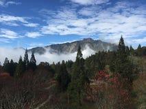 Aturdindo o Mountain View de Ali do inverno em Taiwan foto de stock royalty free