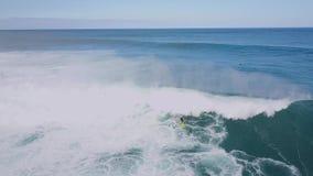 Aturdindo o seascape aéreo do verão do zangão 4k do surfista que surfa em ondas espumosas brancas enormes no oceano azul profundo vídeos de arquivo