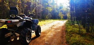 ATV на пути леса стоковые изображения rf