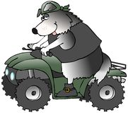 ATV Dog Stock Photo