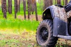 ATV Quadbike i en pinjeskogsommartid Royaltyfria Bilder
