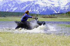 ATV Race. A woman racing an ATV through the water royalty free stock images