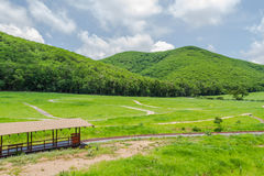 ATV rout, green field in Thailand Stock Photos