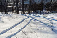 ATV traces in the snow Royalty Free Stock Image