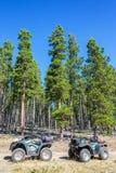 ATVs в лесе Стоковые Фото
