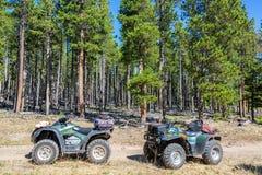 2 ATVs в лесе Стоковая Фотография