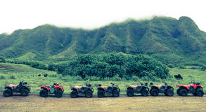 ATVs в ряд Стоковая Фотография
