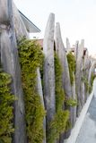 Atypical tree fence in Kirchberg, Kitzbuhel, Austria. Europe stock photo