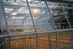 Außenansicht des grünen Hauses mit Lichtern an und Metallbau Lizenzfreie Stockfotos