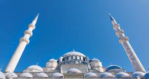 Außentag des niedrigen Winkels schoss von Hauben Suleymaniye-Moschee, Istanbul, die Türkei Stockbild