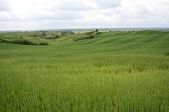 Außerhalb der Stadt - ländliche Landschaft - eine alte Windmühle auf dem Feld Lizenzfreie Stockfotos