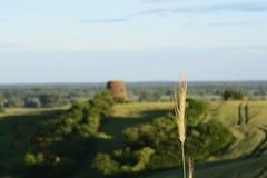 Außerhalb der Stadt - ländliche Landschaft - eine alte Windmühle auf dem Feld Lizenzfreie Stockbilder