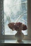 Außerhalb des Fensters - minus 25 stockbild