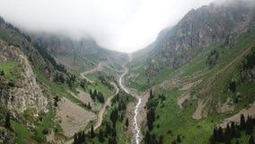 Au centre de la gorge verte avec des montagnes court une rivière Arbres grandissants d'herbe et d'éloge photo libre de droits