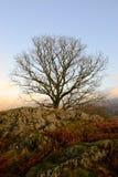 Au-dessus d'Ambleside, l'Angleterre. Image libre de droits
