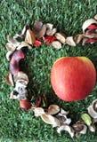 Au-dessus d'Apple frais sur le fond d'herbe Image stock