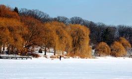 Au-dessus de l'étang congelé Photos libres de droits