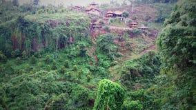 Au-dessus de la jungle Photographie stock