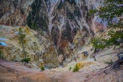Au-dessus de la vue de la terre sèche localisée où la rivière Yellowstone coule dans Grand Canyon en parc national de Yellowstone image stock