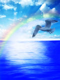 au-dessus des eaux de mouette Images libres de droits