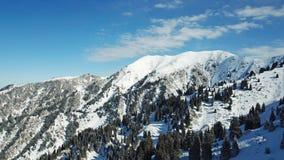 Au-dessus des nuages dans les montagnes neigeuses Sapin vert croissant Ate a couvert de neige images stock