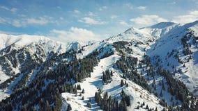 Au-dessus des nuages dans les montagnes neigeuses Sapin vert croissant Ate a couvert de neige image stock