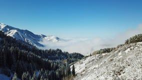 Au-dessus des nuages dans les montagnes neigeuses Sapin vert croissant Ate a couvert de neige photographie stock