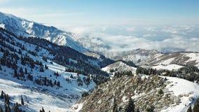Au-dessus des nuages dans les montagnes neigeuses Sapin vert croissant Ate a couvert de neige photo libre de droits