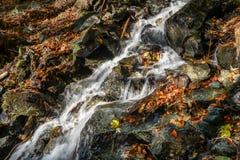 Au-dessus des roches Photo libre de droits