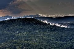 Au-dessus du brouillard Photographie stock libre de droits