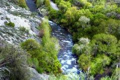 Au-dessus du fleuve Images libres de droits