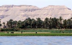 Au-dessus du Nil Image stock