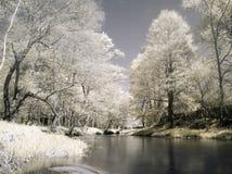 Au fleuve Image libre de droits