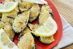 au gratin mussels Zdjęcie Stock