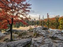 Au lac dans le Central Park photo stock