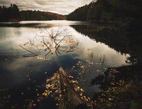 Au lac Meech Images libres de droits