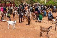 Au marché animal dans Alduba. Images libres de droits