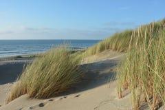 Au milieu des dunes de sable avec l'herbe de dunes sur la Mer du Nord Photo stock