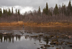 Au nord de Russia.Rivers. Photographie stock libre de droits