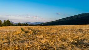 Au pied de la montagne 02 Images libres de droits