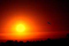 Au-revoir le soleil Photos libres de droits