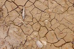 Au sol de sécheresse Photo stock